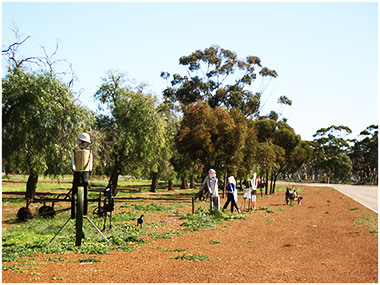 WA Rural Communities-Wheatbelt-Dr Brian Walker-Kununoppin-