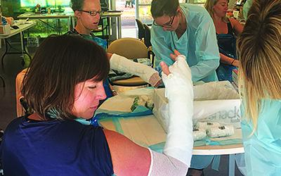 Rural & Remote Emergency Medicine Skills (REM) - Merredin